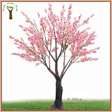 spring pink cherry blossom tree for landscape decor