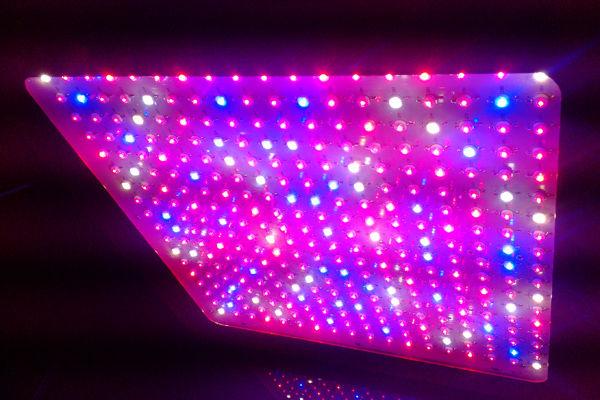 full spectrum 1000w led grow light buy 1000w led grow light. Black Bedroom Furniture Sets. Home Design Ideas