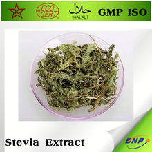 Iso Certified Factory Supply Pure Stevia Powder Stevia Extract