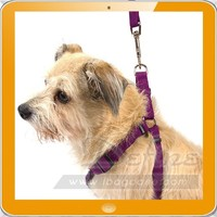 Simple Soft Colorful Pet Dog Harness and Dog Leash