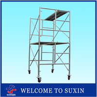 SUXIN Brand new product chinese professional scaffolding learning