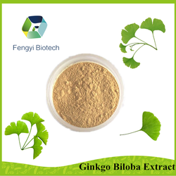 high quality ginkgo biloba extract tablet raw material /herbal extraction