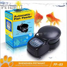 aquarium freshwater fish species