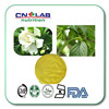 Hot Sale product Sophora flower bud P.E. powder 98% Quercetin