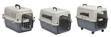 IATA approved airplane transport pet carrier plastic full range of sizes
