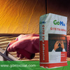 White Cement Tile Adhesive