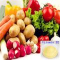 Fonte da fábrica de riboflavina vitamina b2 83-88-5
