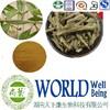 Natural Ashwagandha extract/Withania somnifera/withanolides 5% Free sample