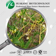 Cuscutae Seed Extract(Ting)