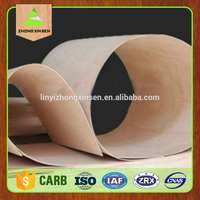 3mm flexible popar plywood,hardwood flexible plywood, linyi other timber for furniture