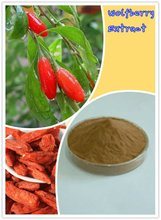 Bulk Natural Goji berries dried fruit