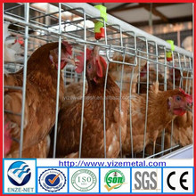 alibaba express prefab chicken farm/chicken farm equipment/chicken farm building