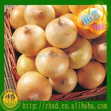 2015 factory price yellow onion