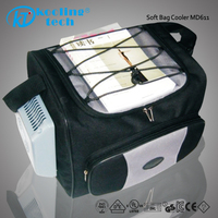Electric Plastic Wine Fitness Foldable 12v DC Insulated Cooler Bag