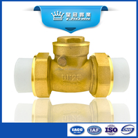 hydrauli&vertical ppr brass check valve