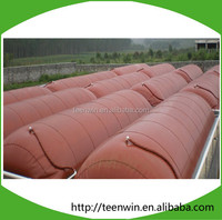 Teenwin anaerobic digester for wastewater treatment plant