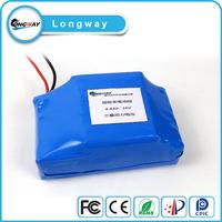 14s E-chariot battery pack 48v 20ah lifepo4 battery pack