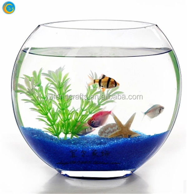 Oblique glass fish bowl glass fish tank buy clear glass for How to make a fish bowl