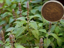 Natural Coleus Forskohlii Root Extract