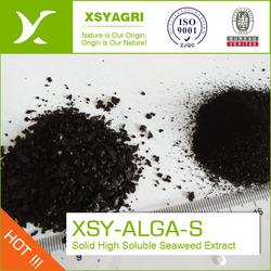 100% Natrual Seaweed Extract Powder, seaweed extract powder fertilizer, 100% water soluble seaweed extract powder