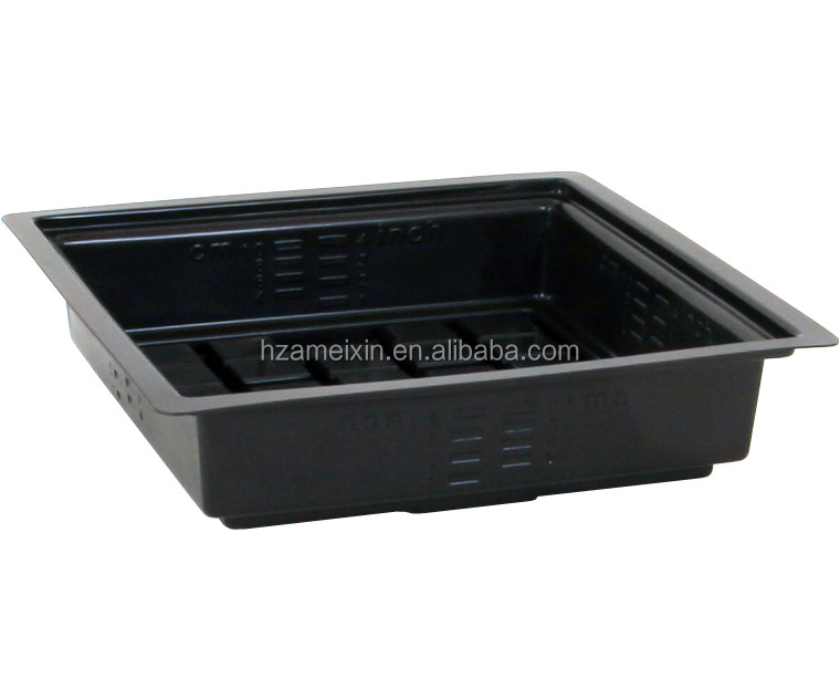 vegetables grow tray