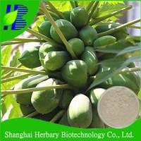 Natural Plant Enzyme Papain/Papaya Extract