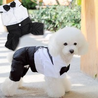 Trade Assurance Fashionable High Quality Matching Dog and Human Pet Dog Wholesale Clothes Apparel Sale
