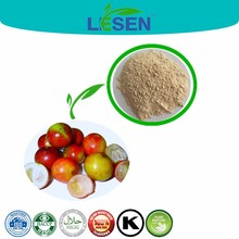 Beauty product Camu Camu fruit Extract/Vitamin C 20% HPLC /Cosmetic Raw Materials