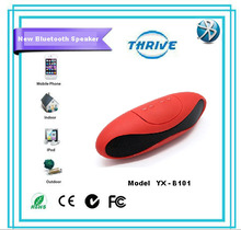 Bluetooth portable professional speaker with fm mp3 sd usb port