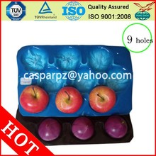 China Factory/SGS/OEM Plastic Fruit Serving Tray