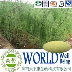 Hot sales plant extract White willow bark extract/Salicin 98%/Relieve arthritis pain Free sample