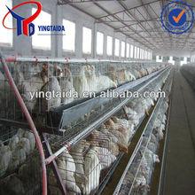 chicken cage plans