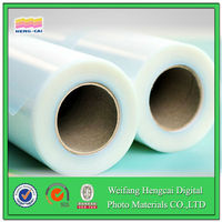 static / silicon cling decorative films for windows