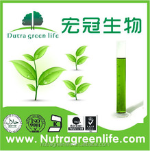 Vende 100% Natural Alfalfa alta calidad extracto en polvo clorofila