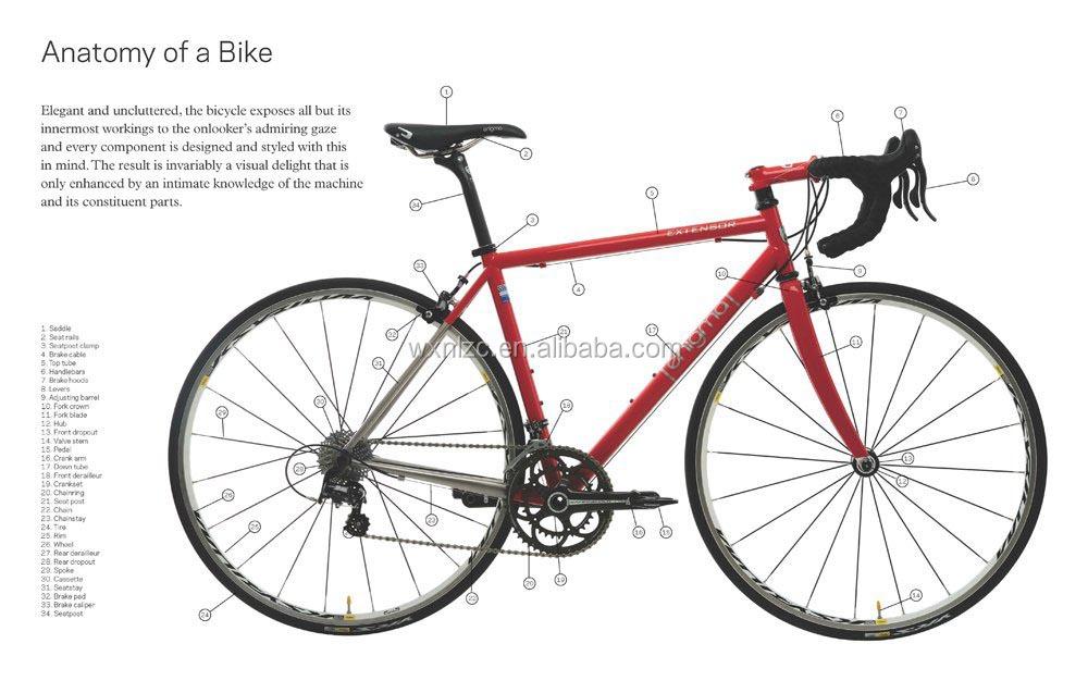 Wheel Size Bicycle Bicycle Rear Wheel Bearing