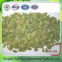 dried fruits raisins dried price
