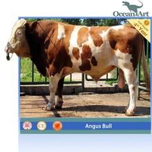 2015 hot sale mechanical bull for sale