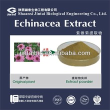 factory supply 4% Polyphenols Echinacea Extract