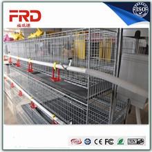 international egg chicken cage