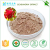100% natural schisandra extract powder,schisandra chinensis extract for natural nutrition supplements