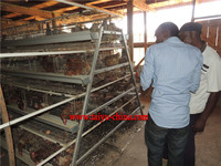 galvanized metal water trough chicken cage for sale