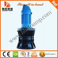 Submersible axial pump for seawater