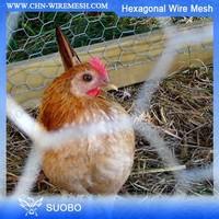 ISO9001 Galvanized Iron Wire Mesh Cheap Galvanized Welded Rabbit Cage Wire Mesh Chicken Coop Galvanized Wire Mesh