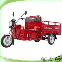 1000W hybrid trike 3 wheel motorcycle