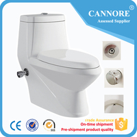 New Designed Italian One Piece Toilet