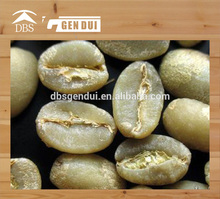 chicchi di caffè verde robusta chicco di caffè verde robusta chicco di caffè
