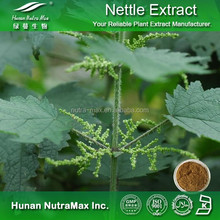 Nettle Seed Plant Extract (4:1,5:1,10:1 or other ratio)