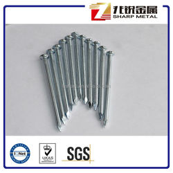 Galvanized grooved shank steel nails