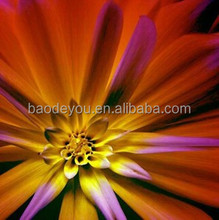 popular decoration modern canvas oil painting flower picture