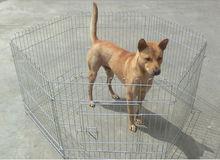 Heavy Duty Folding Pet Cage